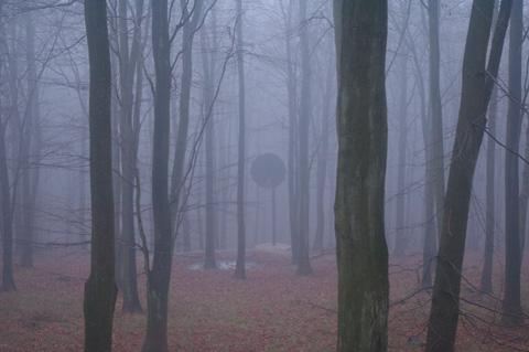 misty_2.jpg